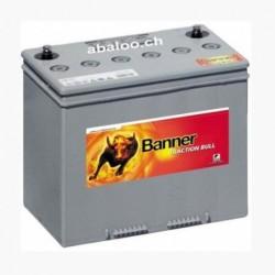 Batterie Banner DB31 - 12V...